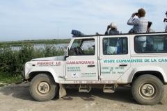 Safari-photo-4x4-pierrot-le-Camarguais
